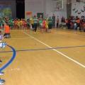 escola de samba capa